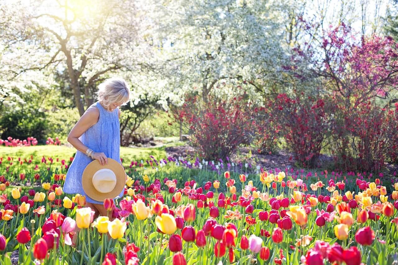 Consejos para la jardinería sin dolor de espalda